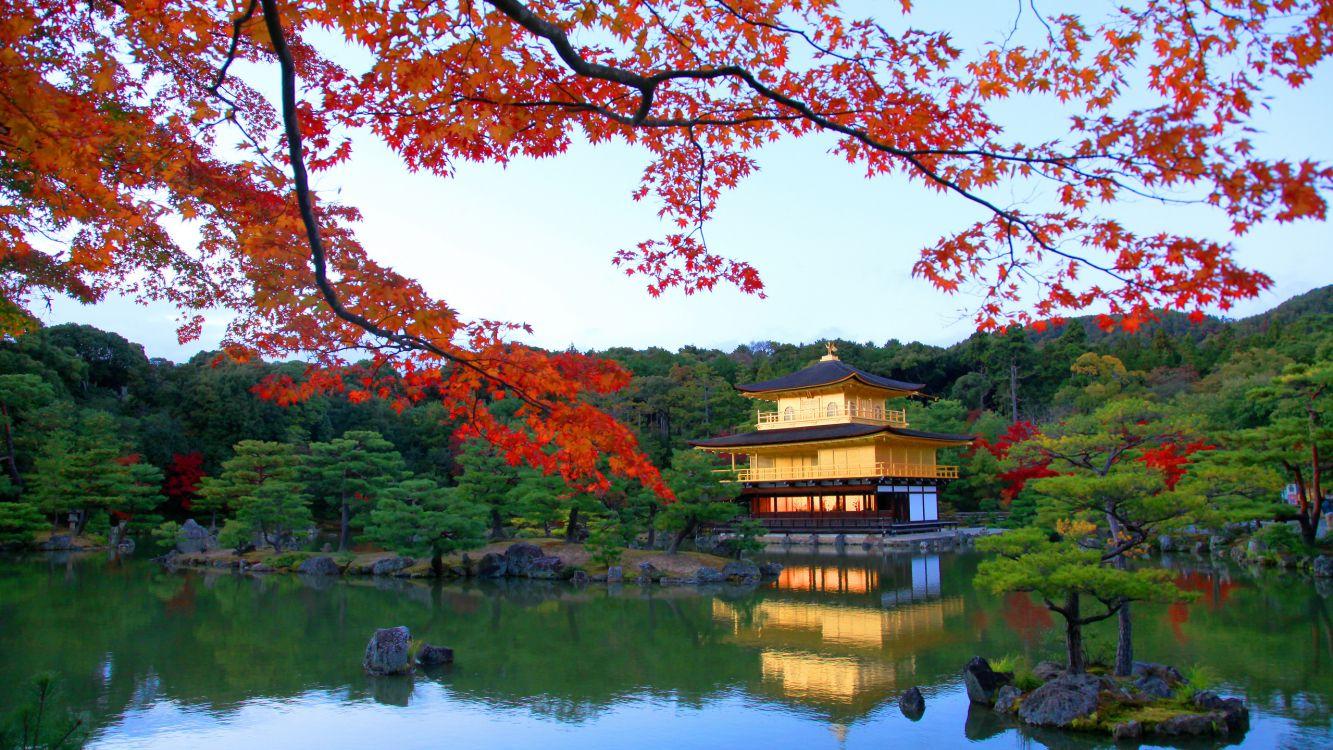 время фото в китайском стиле природа несколько фото