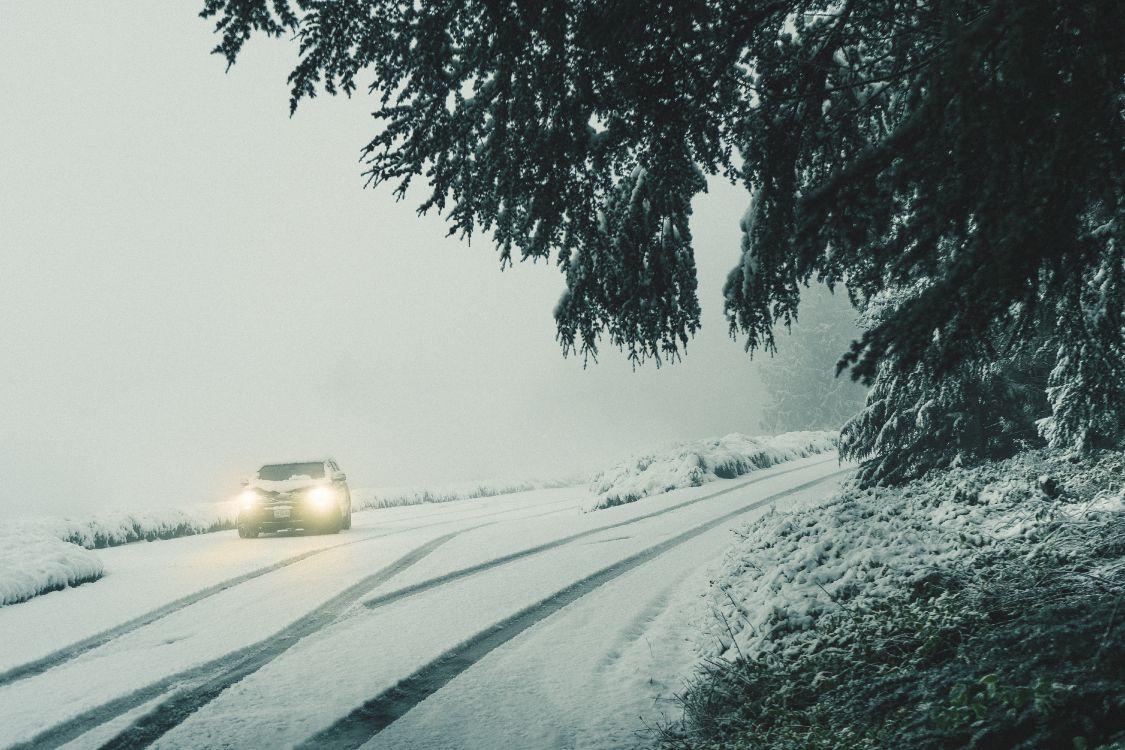 Фотографии метель на дороге