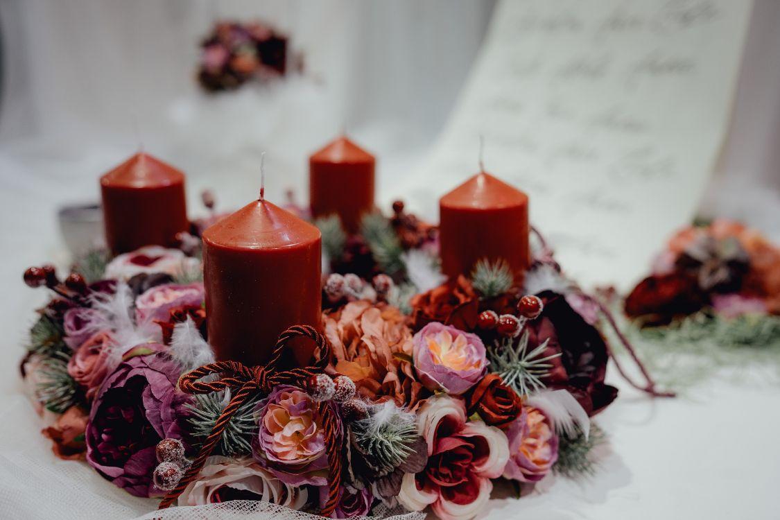 Обои венок, предмет, Рождественский день, цветок, растение в разрешении 6000x4000