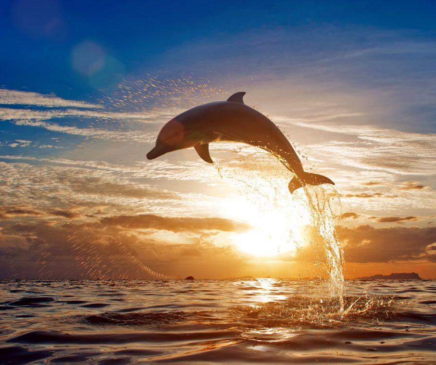 милые картинки про море индусов бог