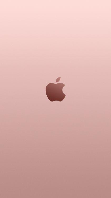 Обои сердце, иллюстрация, Роза, розовый, золото в разрешении 1497x2662