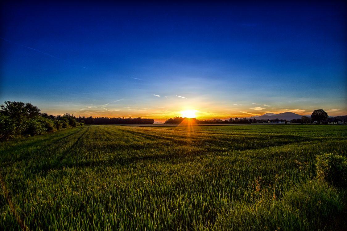 восход солнца в поле фото устала