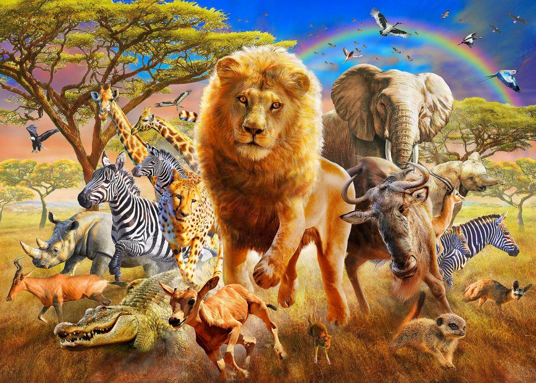 картинки всех животных картинки всех животных мать работала