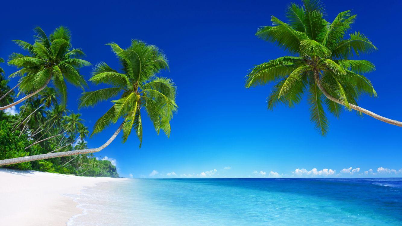 картинки красивого пляжа домов